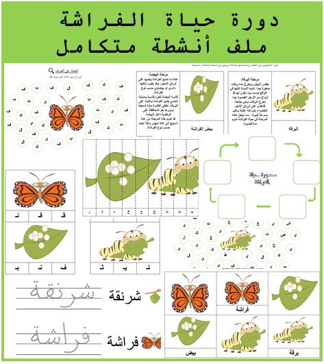 ملف متكامل لأنشطة دورة حياة الفراشة